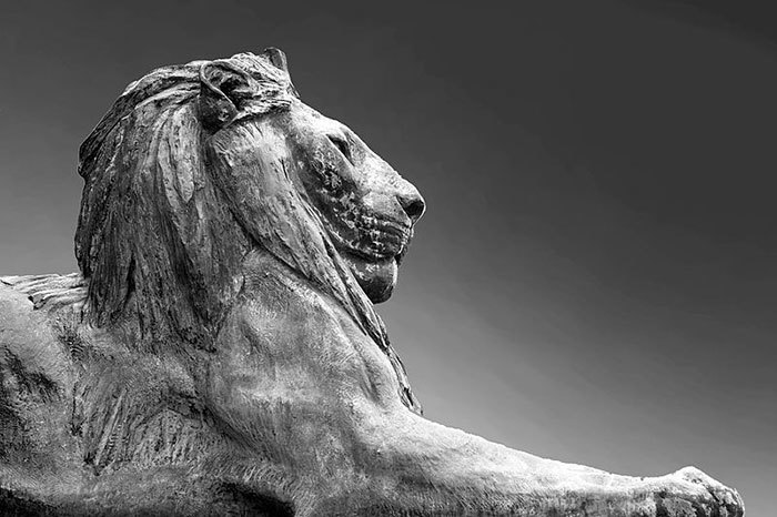 """Until the lion has its own storyteller, the hunter will always be the hero of the story."" A bronze lion stationed at the Rhodes Memorial in Cape Town looks out over the city. <a href=""http://commons.wikimedia.org/wiki/File:Lions,_Rhodes_Memorial,_Cape_Town.jpg"" target=""_blank"">Photo by Kim Stone</a>, and accessed via Wikimedia Commons."