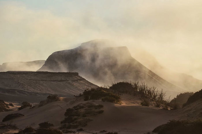 Fog in the early morning in the lower Huab Valley on the Skeleton Coast, Namibia, one of the dustiest places on earth.