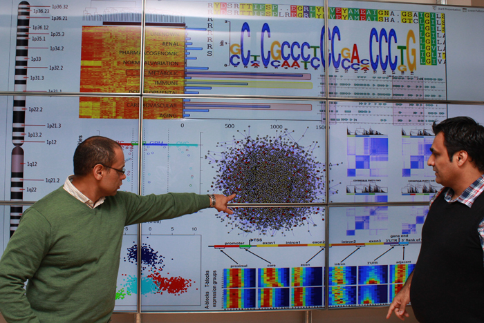 Professor Kevin Naidoo and Dr Jahanshah Ashkani analysing genomic data on a video wall in the Scientific Computing Research Unit Informatics and Visualisation Laboratory.