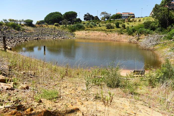 Low water levels in the reservoir on upper campus. Because of the size of campus, UCT has applied for temporary relief from the Level 3B water restrictions. Nonetheless, members of the community are asked to adopt water-savings practices. <b>Photo</b> Robyn Walker.