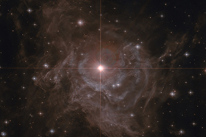 This image, from NASA's Hubble Legacy Archive, is of Cepheid variable star RS Puppis - a star ten times larger than our sun and on average 15 000 times more luminous. It's about Cepheid stars, significant for their usefulness in estimating cosmic distance scale, that UCT astronomer Michael Feast has written in his latest Nature paper. Image processing by Stephen Byrne