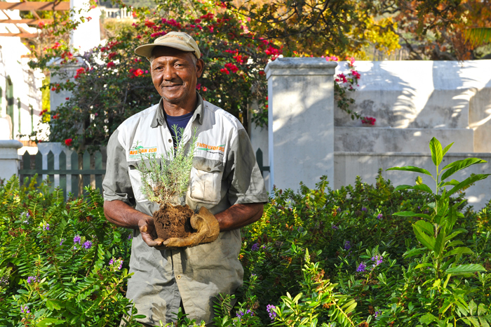 Ground work: Jonathan Fritz of the estates maintenance team has worked at UCT for over 30 years, an observer and participant in the landscape's metamorphosis.