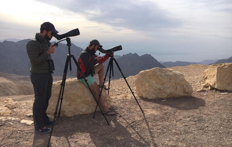 John Kinghorn and Andrew de Blocq peering through their spotting scopes. One of the highlights for the team was watching migrating raptors and storks over the Eilat Mountains. Photo Werner van der Walt.