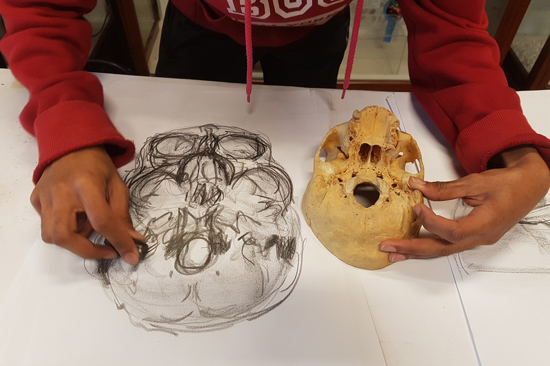 A student participating in the HVO&D course feels the base of the skull to gather sensory data, which is then reflected in marks on the paper.