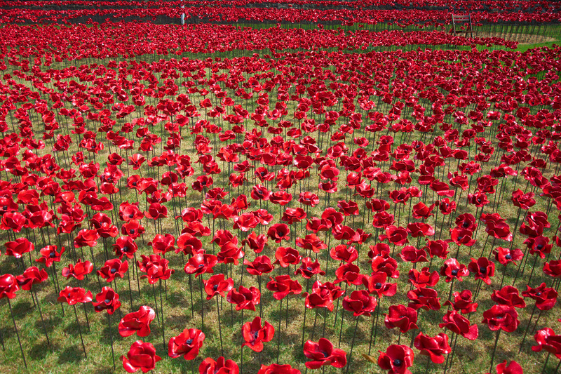 The remembrance poppy has been used since 1921 to commemorate those who died in World War l. Remembrance Day is marked annually on 11 November.