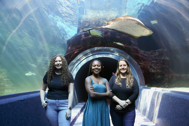 UCT's trio of All-Atlantic Ocean Youth Ambassadors (from left) Kirstin Petzer, Thando Mazomba and Dr Marissa Brink-Hull, at the Two Oceans Aquarium.