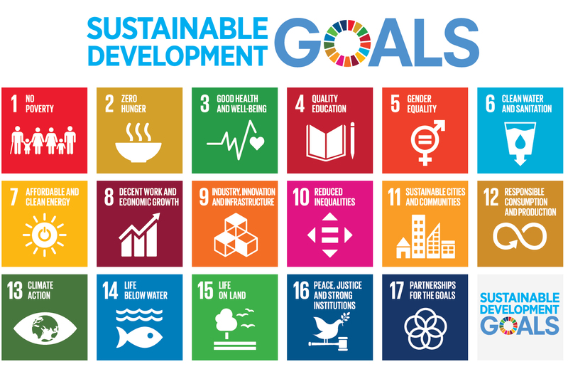 "A poster representing the United Nations' 17 Sustainable Development Goals. <b>Image</b> <a href=""https://www.un.org/sustainabledevelopment/news/communications-material/"" target=""_blank"">UN.org</a>."