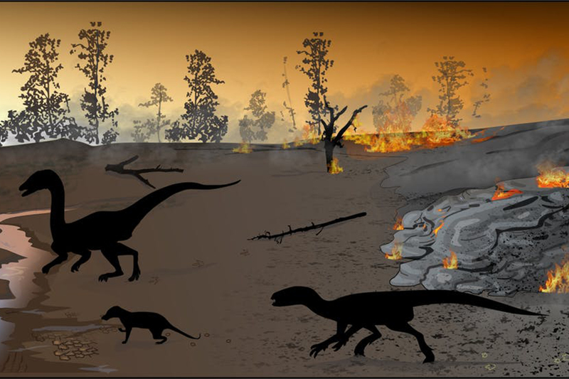 Reconstruction of the ancient environment at the Highlands trace fossil site about 183 million years ago.