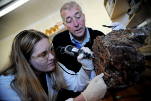 Prof Mike Meadows and doctoral researcher Lynne Quick explore the past