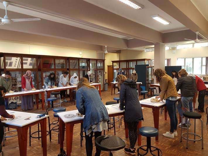A class of UCT medical students learning to observe the anatomy using touch and drawing.