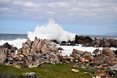 Rapid circulation is one of the factors that keeps False Bay's water from stagnating.